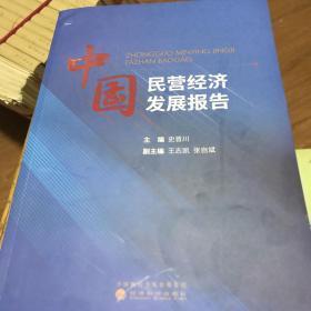 中国民营经济发展报告