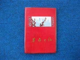 1970年天津市墨水厂制50开塑料革命日记,样板戏《海港》插页