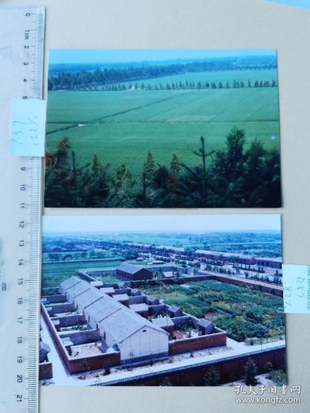 1991年颍上县小张庄老照片两张,(原稿曾入选1991《今日安徽》画册)