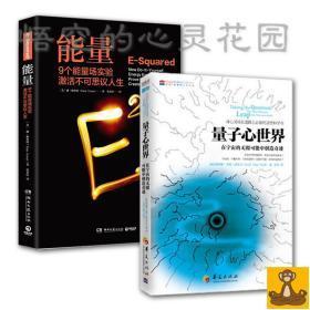正版 能量:9个能量场实验激活 量子心世界两本套