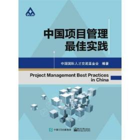 中国项目管理最佳实践