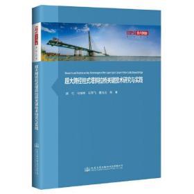 超大跨径柱式塔斜拉桥关键技术研究与实践