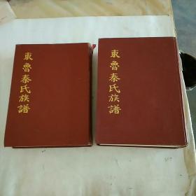 东鲁秦氏族谱(上下全),古沛秦氏族谱