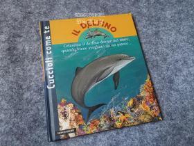 万叶堂 意大利语原版童书  il delfino 海豚