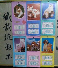 1987骞达�骞村������寮�����锛�