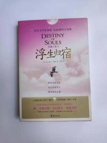 灵魂之旅Ⅱ:浮生归宿 (库存图书未阅,内页全新)