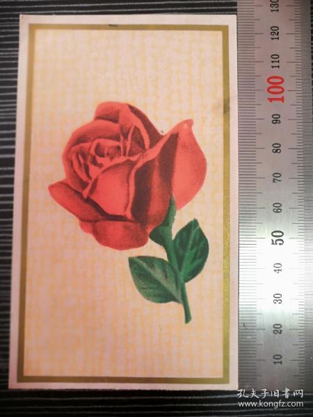 賀年卡1964年出品玫瑰(未用)作者:莊寶華浙江人民美術出版社