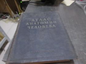ATЛAC AHATOMИИ ЧEЛOBEKA(1)  库2