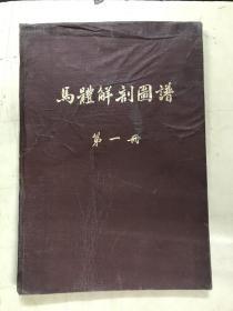 马体解剖图谱  第一册(骨骼及韧带)【彩色】