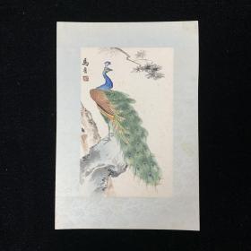 【五十年代荣宝斋原装裱木版水印】马晋画孔雀-花绫精裱