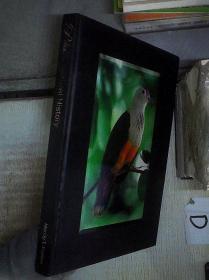 PALAU-NATURAL HISTORY 帕劳自然历史 (04)