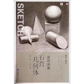 石膏几何体 严涛 编著 重庆大学出版社 9787562481638 石膏几何体 正版图书