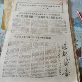 114.文革小报《煤都新报》1967.12.6