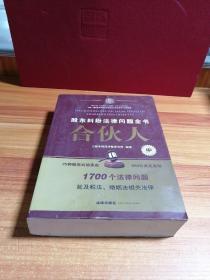 合伙人:股东纠纷法律问题全书(中)
