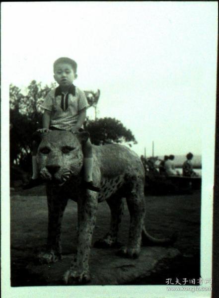 台湾纸片、照片、老照片·骑豹子的小男孩