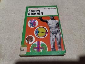 法文原版 科普画册 《人体》
