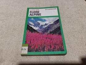 法文原版 科普画册 《高山植物》