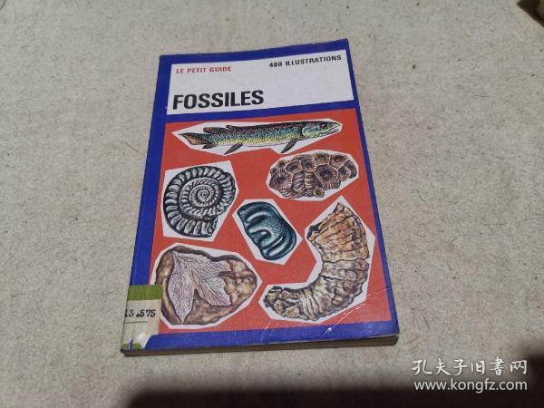 法文原版 科普画册 《化石》