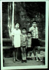 台湾纸片、照片、老照片·关注