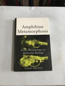 Amphibian Metamorphosis:From Morphology to Molecular Biology