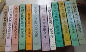 中国古代禁毁小说文库 12册合售 不重复:A3架顶