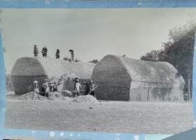 1950年代,安徽农村夏天麦收打谷场上之摄影大型底片两种