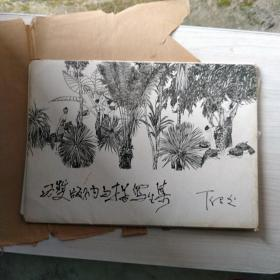 丁绍光西双版纳白描写生集内有约20幅著名画家绘画的作品