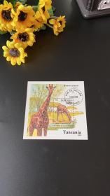 坦桑尼亚 1995年 长颈鹿 小型张