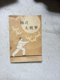 杨式太极拳