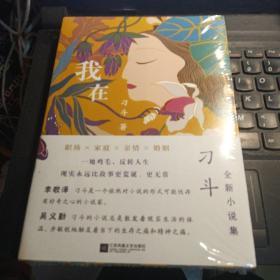 我在 刁斗 江苏凤凰文艺出版社