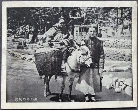 """伪满时期 """"中国风俗""""系列 画片 """"骑驴走亲""""一枚"""