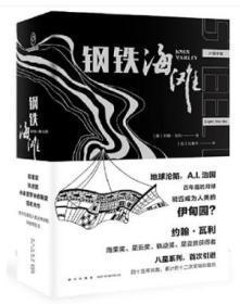 钢铁海滩 作者:[美]约翰˙瓦利 著; [加]仇春卉 译; 出版社:新星出版社