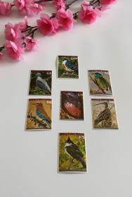 赤道几内亚 1974年 鸟类