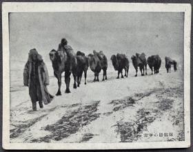 """伪满时期 """"中国风俗""""系列 画片 """"雪中骆驼商队""""一枚"""