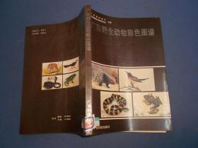 广东野生动物彩色图谱--16开87年一版一印