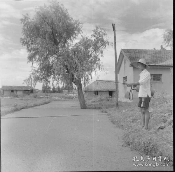 1965年安徽省农业展览馆筹备组底片一张:社员在为池塘净化水源。