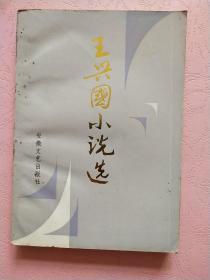 王兴国小说选【1989年1版1印】