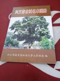 兴义市古树名木图册