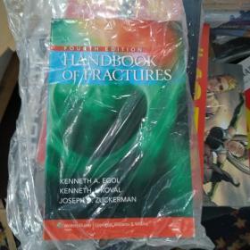 Handbook of Fractures[骨折手册]