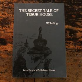 THE SECRET TALE OF TESUR HOUSE 斋苏府秘闻