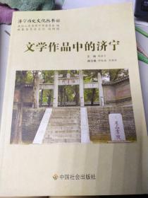 济宁历史文化丛书62文学作品中的济宁