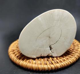 4071 猛犸象牙 化石 切块 155.4克