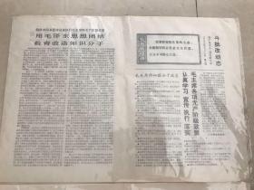 ���╁��� 1969骞�