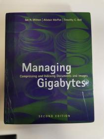Managing Gigabytes:Compressing and Indexing Documents and Images (The Morgan Kaufmann Series in Multimedia and Information Systems)(2 Sub edition)