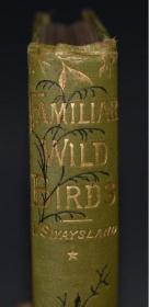 1881年- Familiar Wild Birds《常见野鸟图谱》第1辑初版本 珍贵满金彩绘豪华版 40枚手工上色珂罗版彩色插图 绝伦美艳