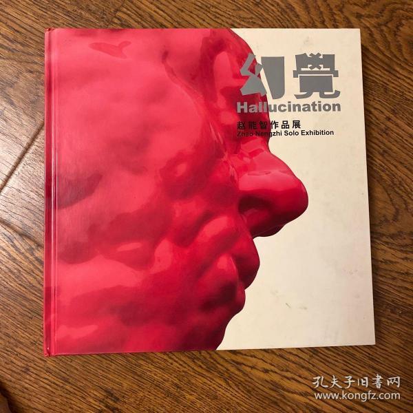 赵能智作品展-幻觉