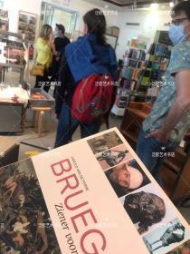 Bruegel 勃鲁盖尔作品全集 精装16开 241页 2007年比利时出版印刷