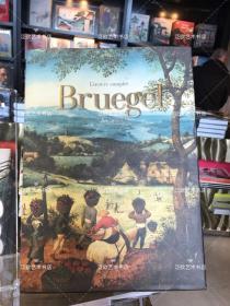 pieter Bruegel 皮特勃鲁盖尔作品全集精装大8开492页 2018年8月出版 西班牙印刷