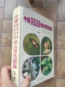 中国粮食作物、经济作物、药用植物病虫原色图鉴 下册