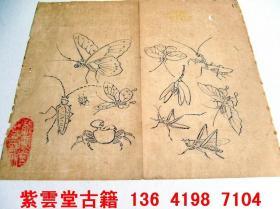明;芥子园画谱(昆虫)原始手工画稿. #4779